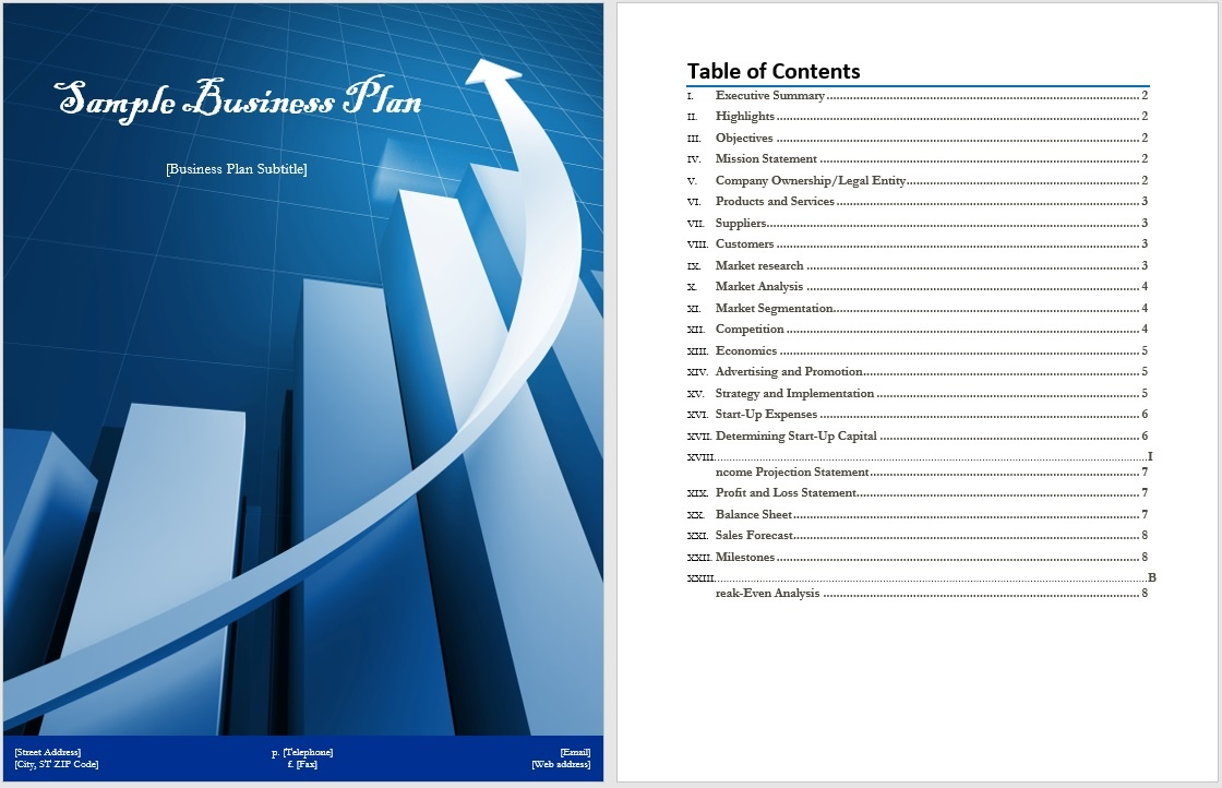 financial section business plan template