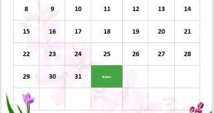 2017 Teal Calendar Template