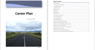 Career Plan Template 1