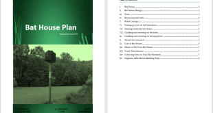Bat House Plan Template
