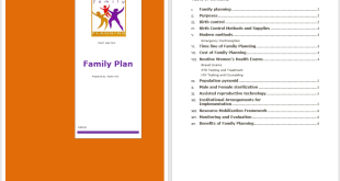 Family Plan Template