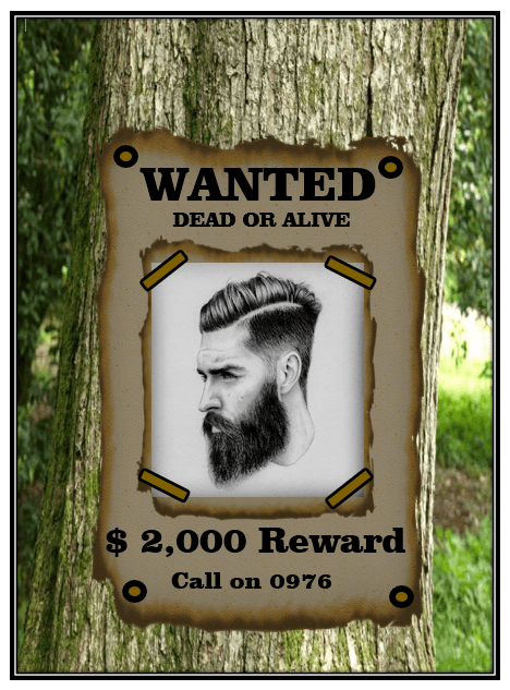Wanted Poster Template 12