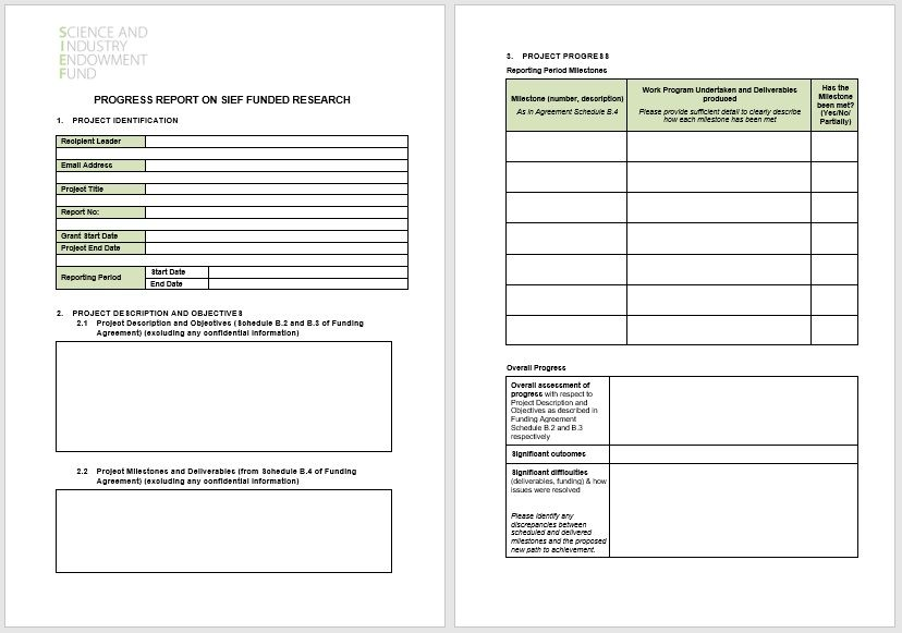 project status report template 18